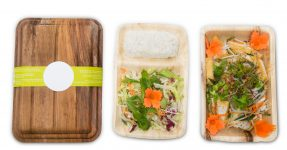 Plastic Alternatives - sustainable packaging Areca palm leaves